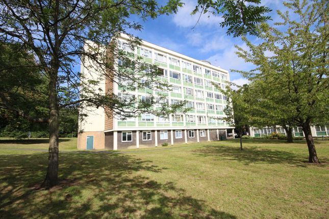 Thumbnail Flat to rent in Jocks Lane, Binfield, Bracknell