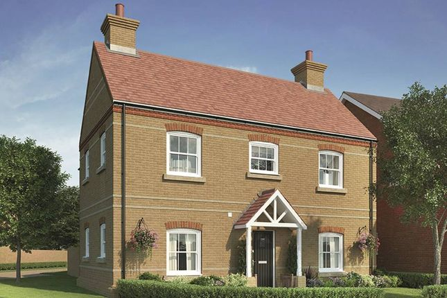 "Thumbnail Property for sale in ""The Nessvale"" at Holwell Road, Pirton, Hitchin"