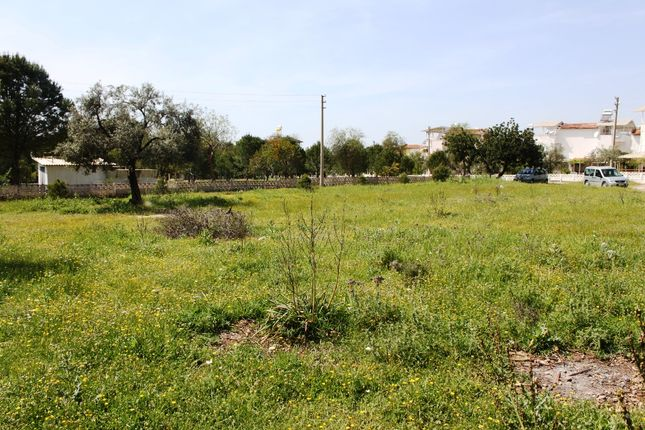 Thumbnail Land for sale in Akbuk, Aydin, Turkey