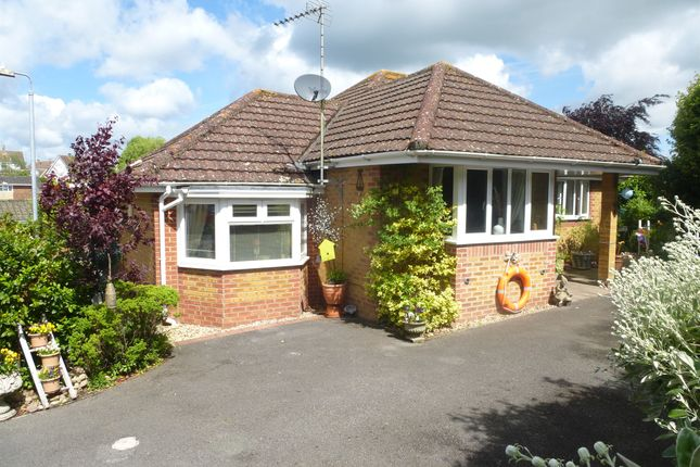 Thumbnail Detached bungalow for sale in The Homelands, Warminster