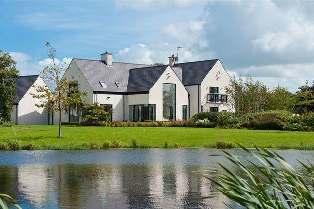 Thumbnail Detached house for sale in Hillsborough Road, Moneyrea, Newtownards