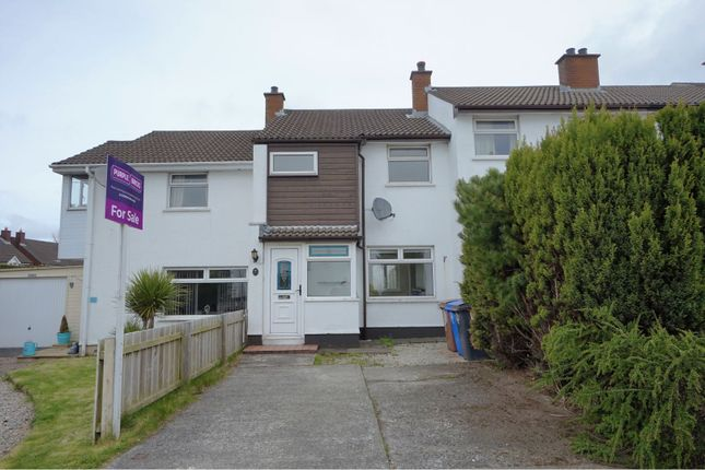 Thumbnail Terraced house to rent in Glendhu Grove, Belfast