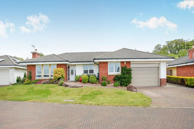 Thumbnail Bungalow for sale in Turnberry Avenue, Dumfries