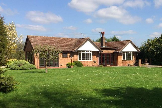 4 bed detached bungalow for sale in High Wych Lane, High Wych, Sawbridgeworth