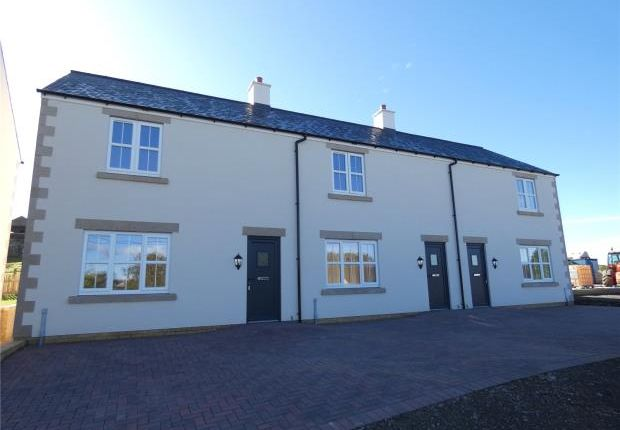 Thumbnail Terraced house for sale in 8 & 9, The Forge, Gilsland, Brampton