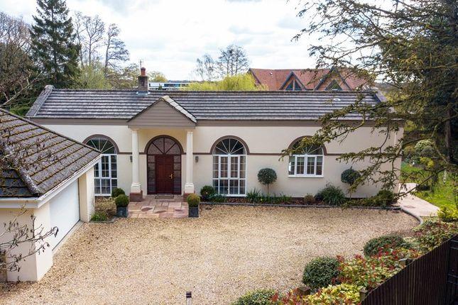 Thumbnail Detached bungalow for sale in Avon Castle Drive, Ringwood