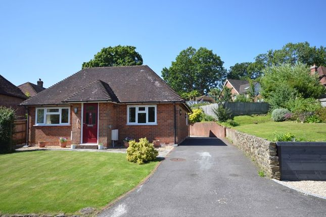 Thumbnail Bungalow to rent in Glebe Road, Fernhurst, Haslemere