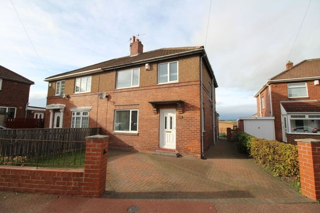 Semi-detached house to rent in Garden House Estate, Ryton