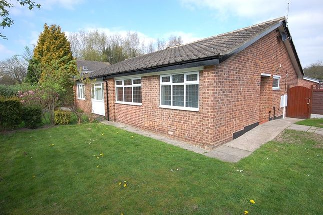 Thumbnail Bungalow to rent in Camp Wood Close, Little Eaton, Derby