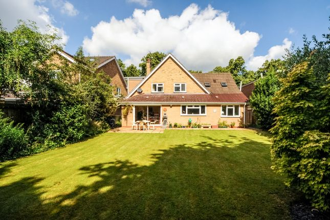 Thumbnail Detached house to rent in Beverley Road, Leamington Spa