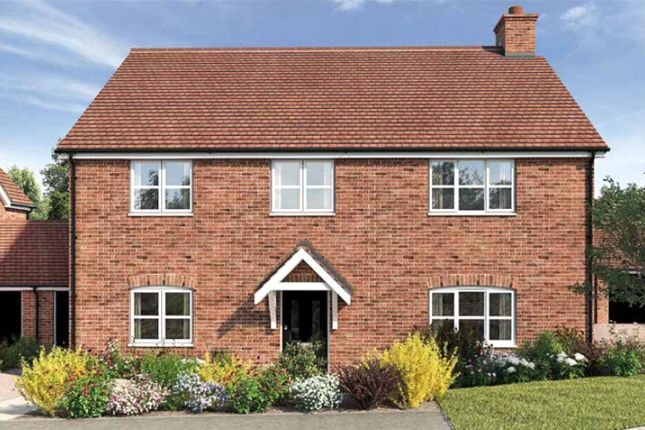 Thumbnail Detached house for sale in Birch Meadow, Barkway, Hertfordshire