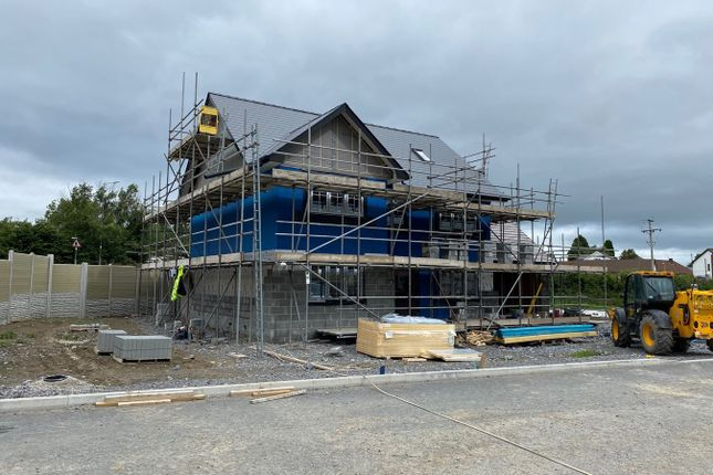 Thumbnail Detached house for sale in Rhydargaeau, Carmarthen