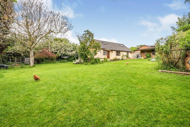 Thumbnail Detached bungalow for sale in Cedars, Dormington, Hereford