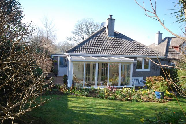 Detached bungalow for sale in St. Golder Road, Newlyn, Penzance
