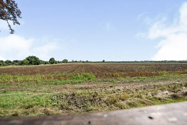 Fields At Back of Lakeside, Rainham RM13