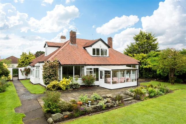 Thumbnail Detached bungalow for sale in The Avenue, Park Estate, Haxby, York