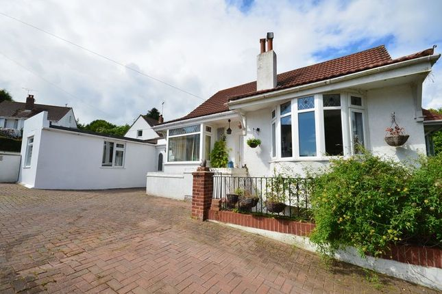 Thumbnail Bungalow for sale in The Close, Paignton
