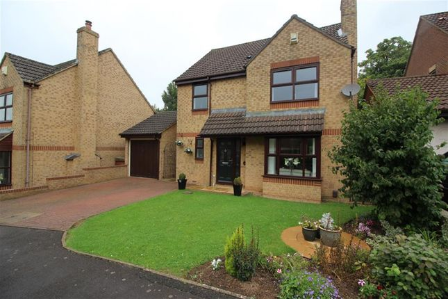 Thumbnail Detached house for sale in Lime Croft, Yate, Bristol