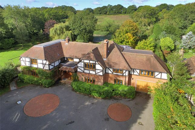 Thumbnail Detached house for sale in North End, Ditchling, Hassocks, East Sussex
