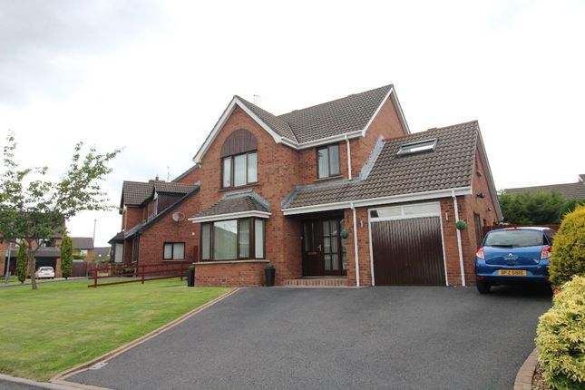 Thumbnail Detached house for sale in Thornhill Park, Lisburn