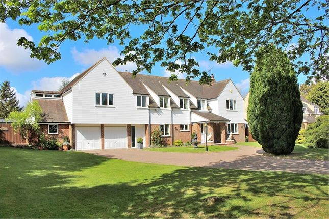 Thumbnail Detached house for sale in Bardfield Road, Finchingfield, Braintree