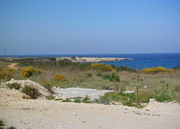 Thumbnail Land for sale in Karpaz Gate Marina, Rizokarpaso, Famagusta, Cyprus