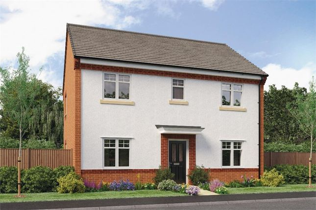 "Thumbnail Detached house for sale in ""Buchan Da"" at Leeds Road, Thorpe Willoughby, Selby"