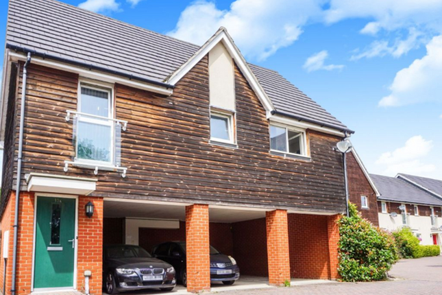 Thumbnail Detached house for sale in Chelmer Road, Chelmsford