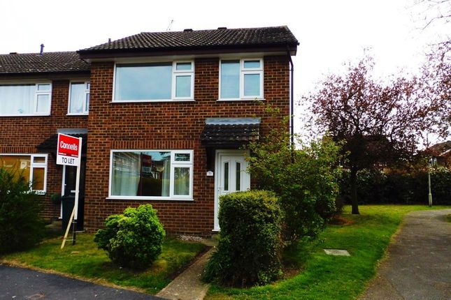 3 bed property to rent in Cypress Avenue, Ashford, Kent