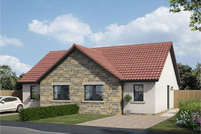Thumbnail Semi-detached bungalow for sale in Cara, The Avenue, Lochgelly, Fife