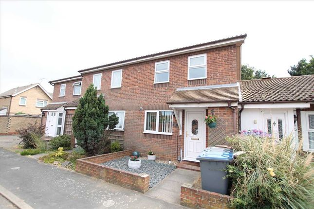 Thumbnail Property to rent in Shotley Close, Felixstowe