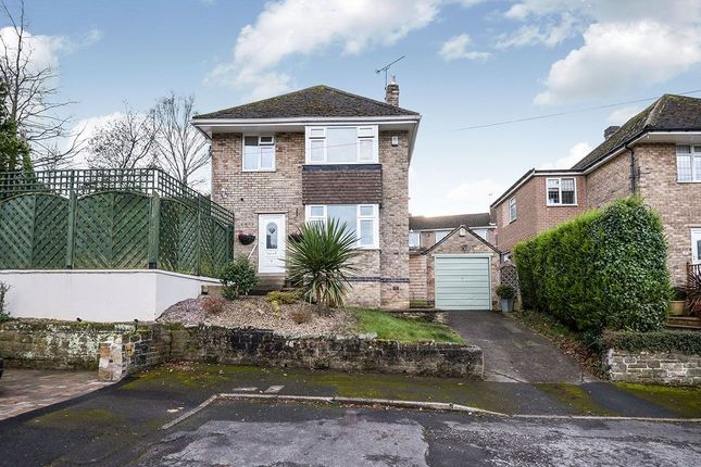 Thumbnail Detached house for sale in Twentywell Drive, Sheffield