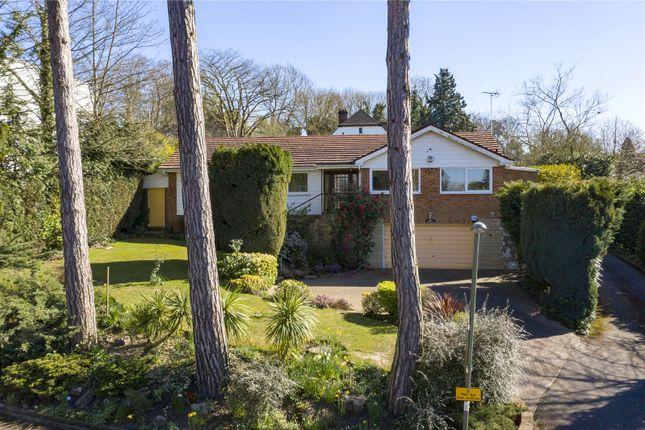 Thumbnail Detached bungalow for sale in Oakshade Road, Oxshott, Leatherhead, Surrey