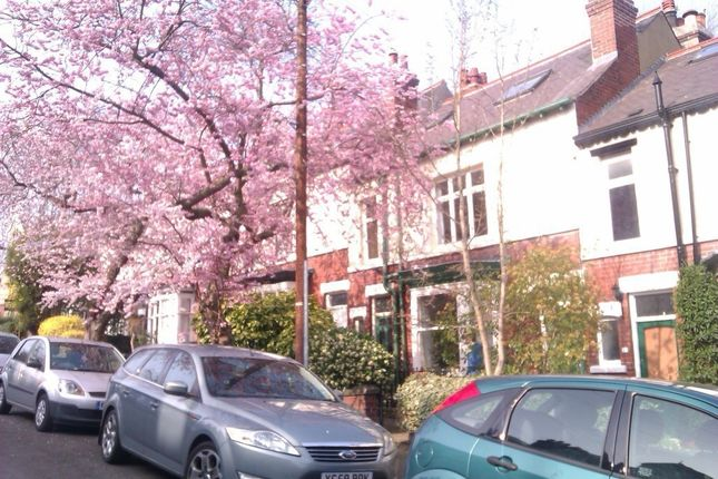 1 bed flat to rent in Strathtay Road, Sheffield