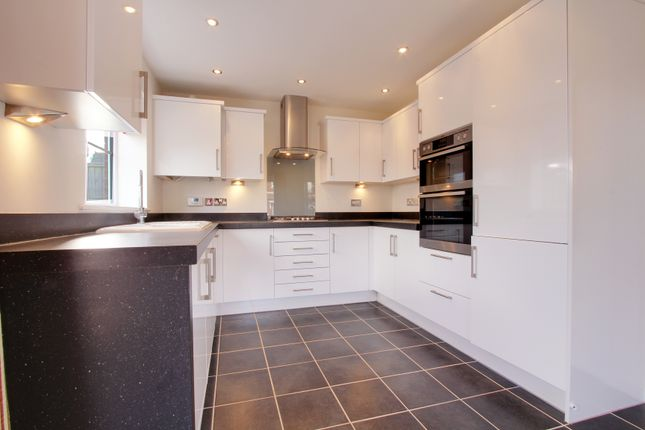 Thumbnail Detached house to rent in Alexander Road, Glebe Park, Lincoln