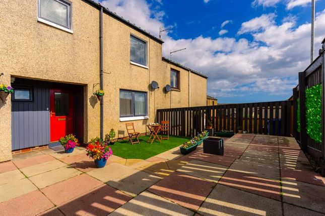 Thumbnail Terraced house for sale in Eastcliffe, Spittal, Berwick-Upon-Tweed