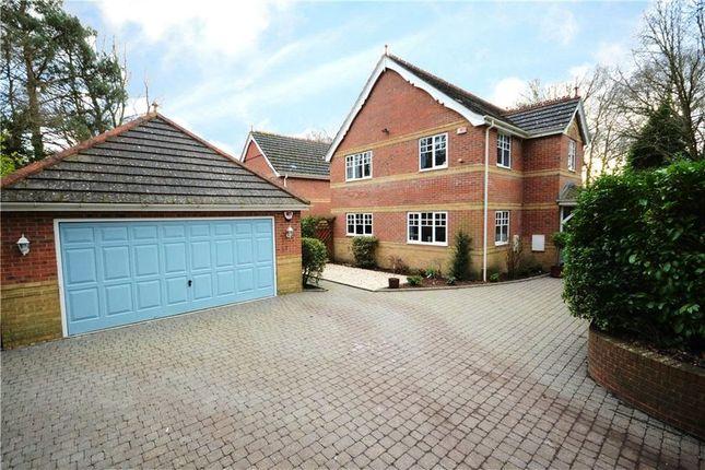 Thumbnail Detached house to rent in Sandy Lane, Sandhurst