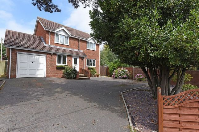 Thumbnail Detached house for sale in Burney Bit, Pamber Heath, Tadley