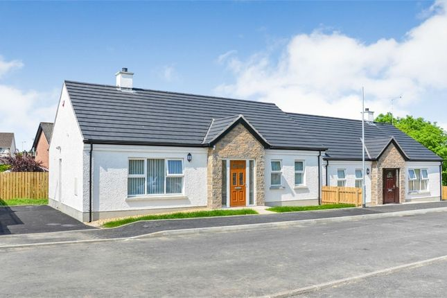 Thumbnail Semi-detached house for sale in Woodbrook, Omagh, County Tyrone