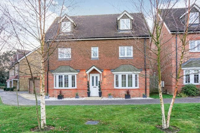 Thumbnail Detached house for sale in Fox Close, Hassocks