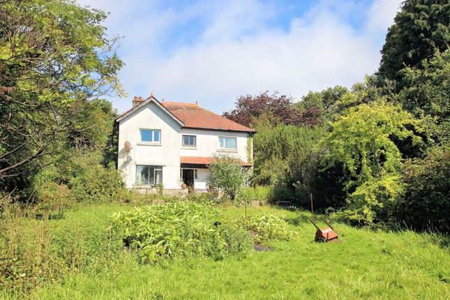 Thumbnail Detached house for sale in North Tawton