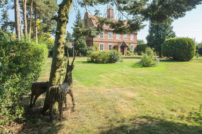 Thumbnail Detached house for sale in Denmark Hill, Palgrave, Diss