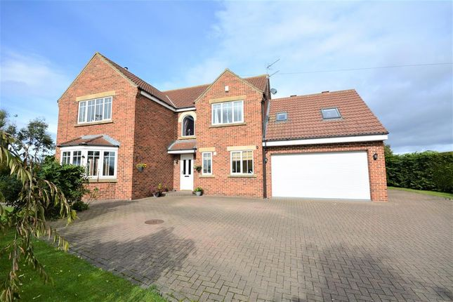 Thumbnail Detached house for sale in High Road Avenue, Bishop Middleham