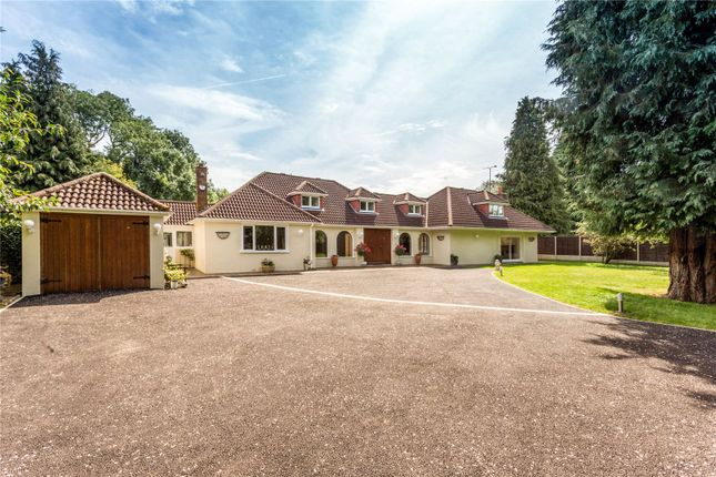 Thumbnail Detached house for sale in Willow Tree Farm, Pipers Lane, Markyate, St. Albans, Hertfordshire