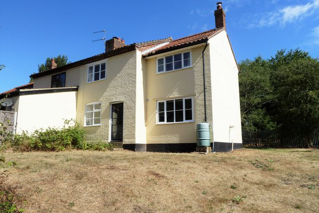 Thumbnail Semi-detached house to rent in Aldeby, Beccles