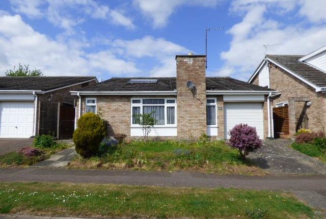 Thumbnail Detached bungalow for sale in Bromham, Beds