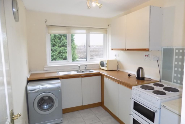 Thumbnail Flat to rent in Mclees Lane, Motherwell
