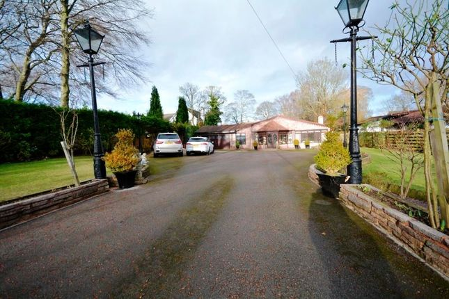 Thumbnail Bungalow for sale in North Lodge, Chester Le Street