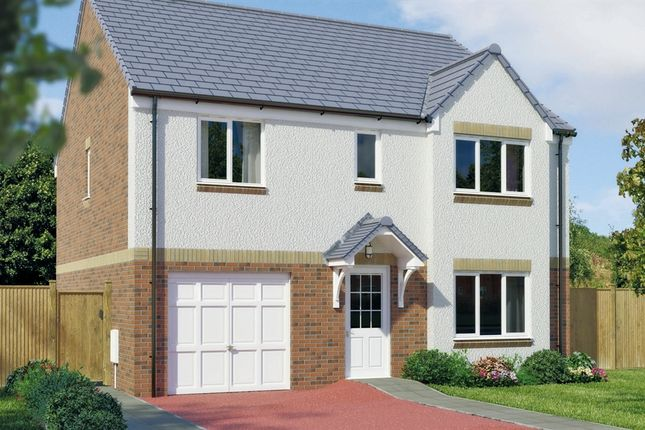 """Thumbnail Detached house for sale in """"The Whithorn"""" at Capelrig Road, Newton Mearns, Glasgow"""