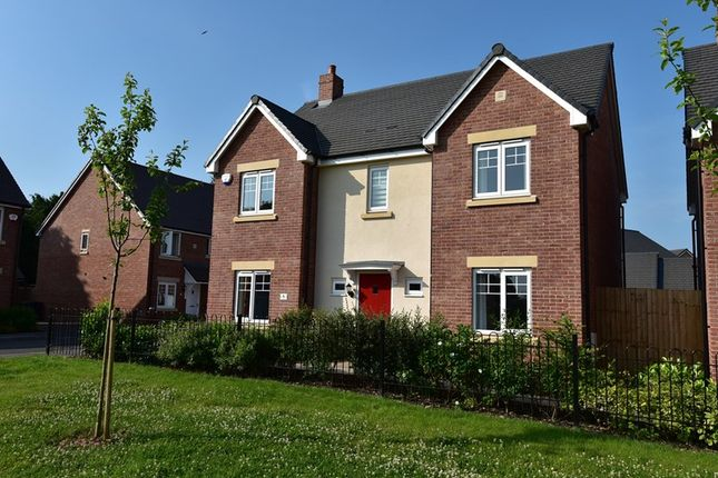 Thumbnail Detached house for sale in Toll Orchard, Wychbold, Droitwich
